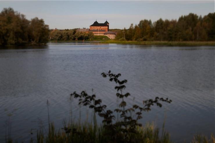 Järvi ja Hämeen linna