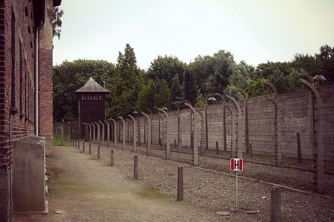 Auschwitz kokemuksia